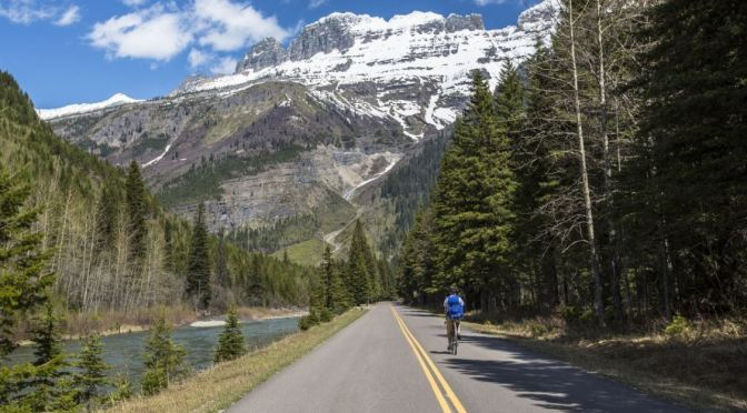 Road Tripping Through Glacier And Yellowstone National Parks