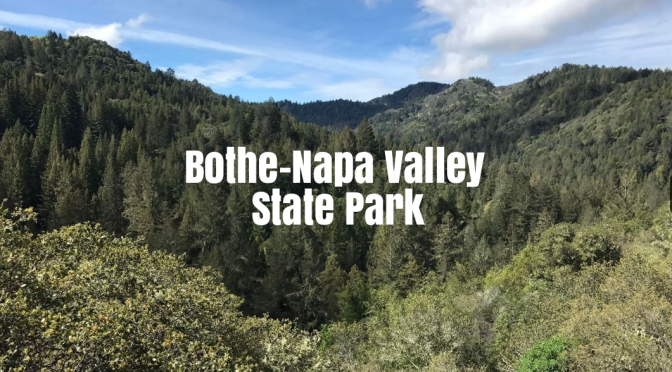 Top Hikes In California: Bothe-Napa Valley State Park Offers Redwoods & Views From Coyote Peak