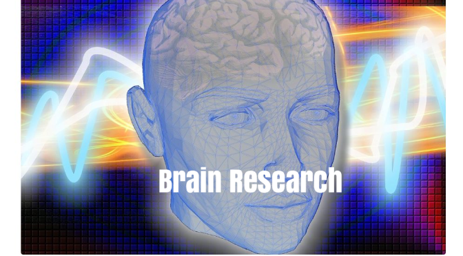 Brain Health Research: Controlling Blood Pressure Reduces Age-Related Cognitive Loss