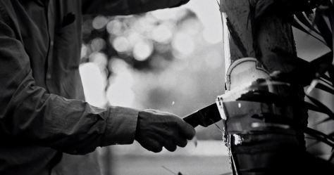 Carbon Cinematic Short Film by Felipe Hermini 2019