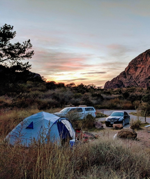 Chisos Basin Campground Big Bend, TX