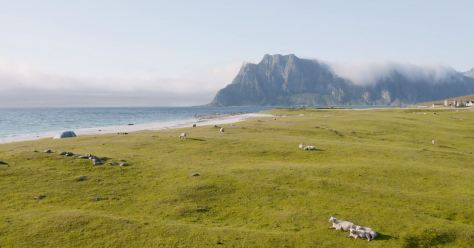 Lofoten In July 2019 Directed By Timo Oksanen