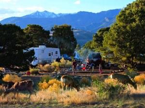 Piñon Flats Campground
