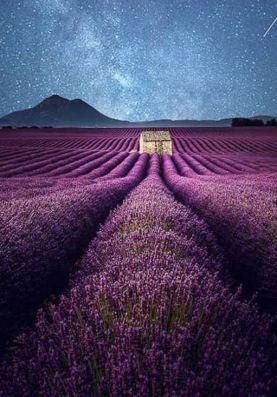 Samir Belhamra Visual Artist - Valensole by Night, South France, Provence 2