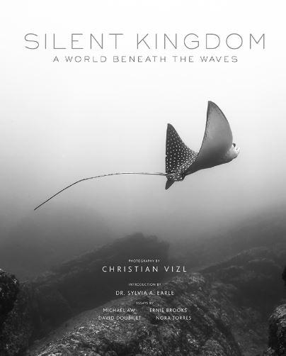 Silent Kingdom A World Beneath The Waves Christian Vizl