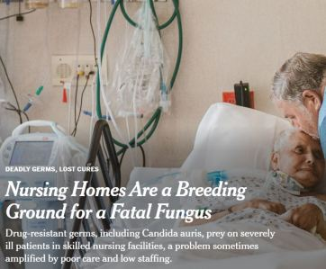 Nursing Homes article in New York Times Sept 2019