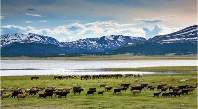 "Road Trip Adventures: The ""Khar Us Nuur National Park"" In Mongolia"
