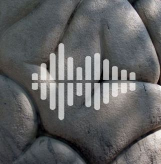 Science Mag Podcast Consciousness