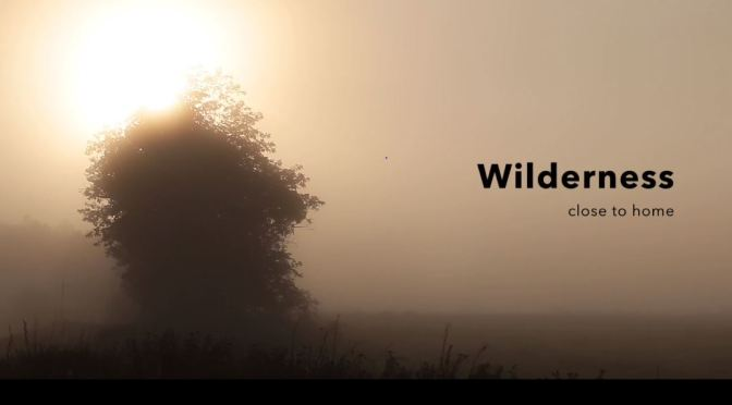 "New Travel Videos: ""Wilderness – Close To Home"" In Tuscany, Italy By Mark Soetebier (2019)"