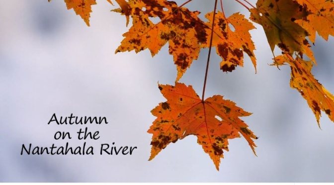 "New Videos: ""Autumn On The Nantahala River"" By Mark Williams (2019)"