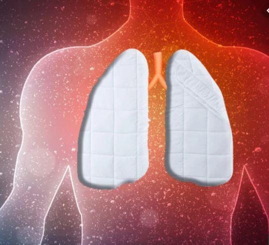 Feather Duvet Lung