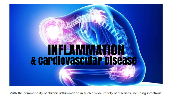 Health Studies: Chronic Inflammation Reduced By Exercise, Lowering Risk Of Cardiovascular Disease