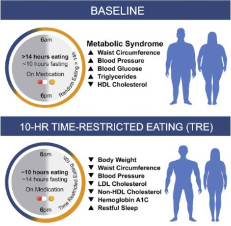 10 Hour Time Restricted Eating (TRE) Benefits