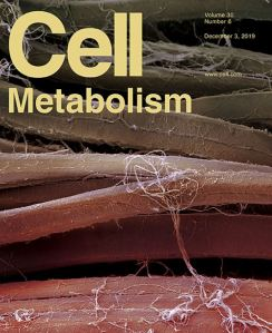 Cell Metabolism December 2019