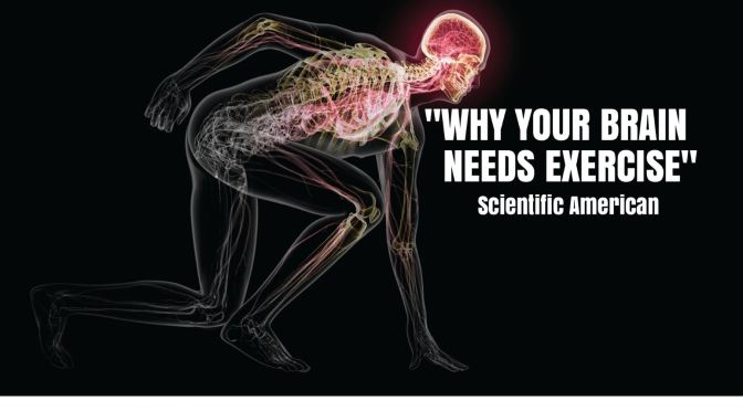 "Health Infographics: How Exercise Creates ""New Neurons In Aging Brains"""