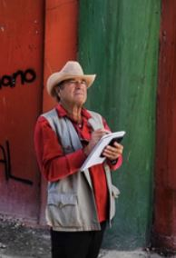 Paul Theroux's On The Plain of Snakes A Mexican Journey