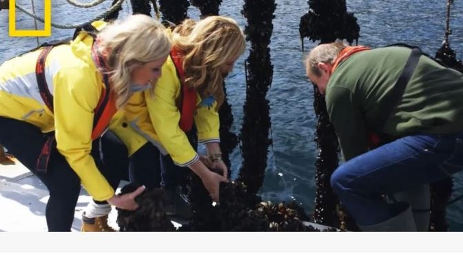 "Top New Travel Videos: ""Harvesting Mussels In Ireland"" (Trip Sisters -National Geographic)"