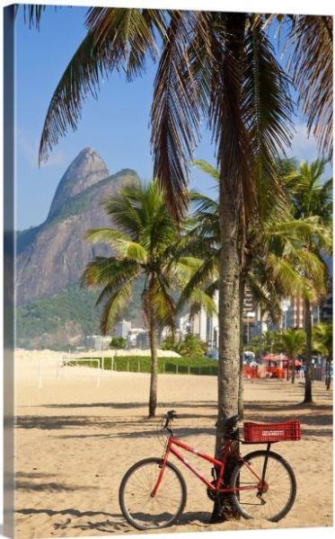 Brazil, Rio De Janeiro, Leblon beach, Bike leaning on palm tree Wall Art by Jane Sweeney