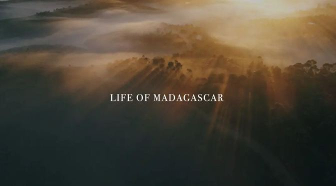 "Top New Travel Videos: ""Life Of Madagascar"" By Stéphane Ridard"