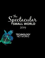 Nikon Small World Competition 2019 page-12