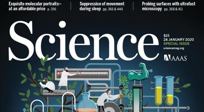 Science Magazine News: Thin Air, Cayman Islands And Brain Arousal States