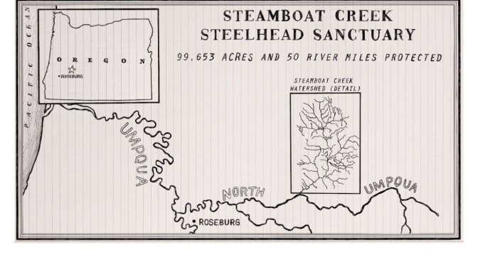 Nature Videos: Steelhead Sanctuary, Oregon (Conservation Alliance)