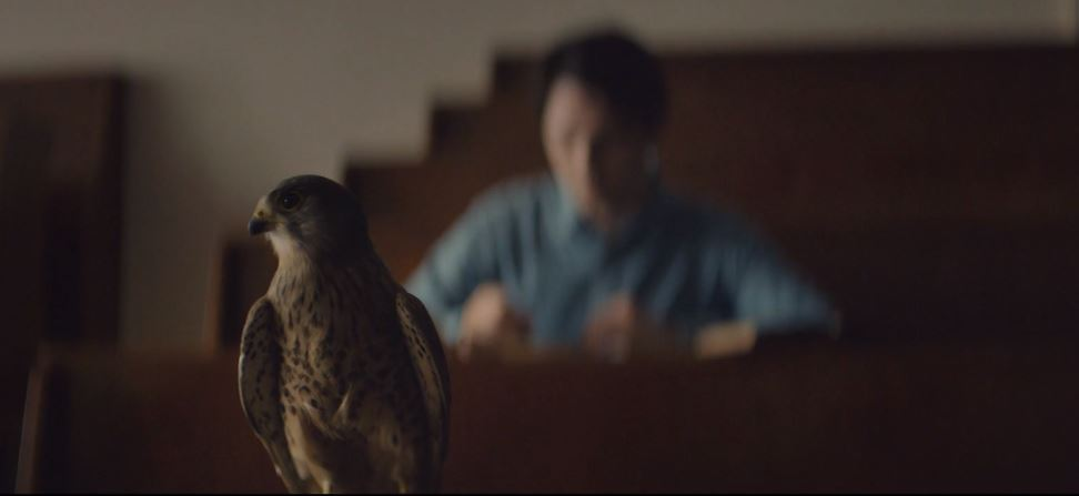 The Birdman Cinematic Poem Short Film by Volvo and Pulse Films Directed by Edward Lovelace and James Hall January 2020