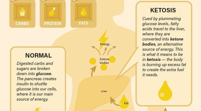 "Healthy Diets: ""The Science Behind Fasting – Ketosis"" (Infographic)"