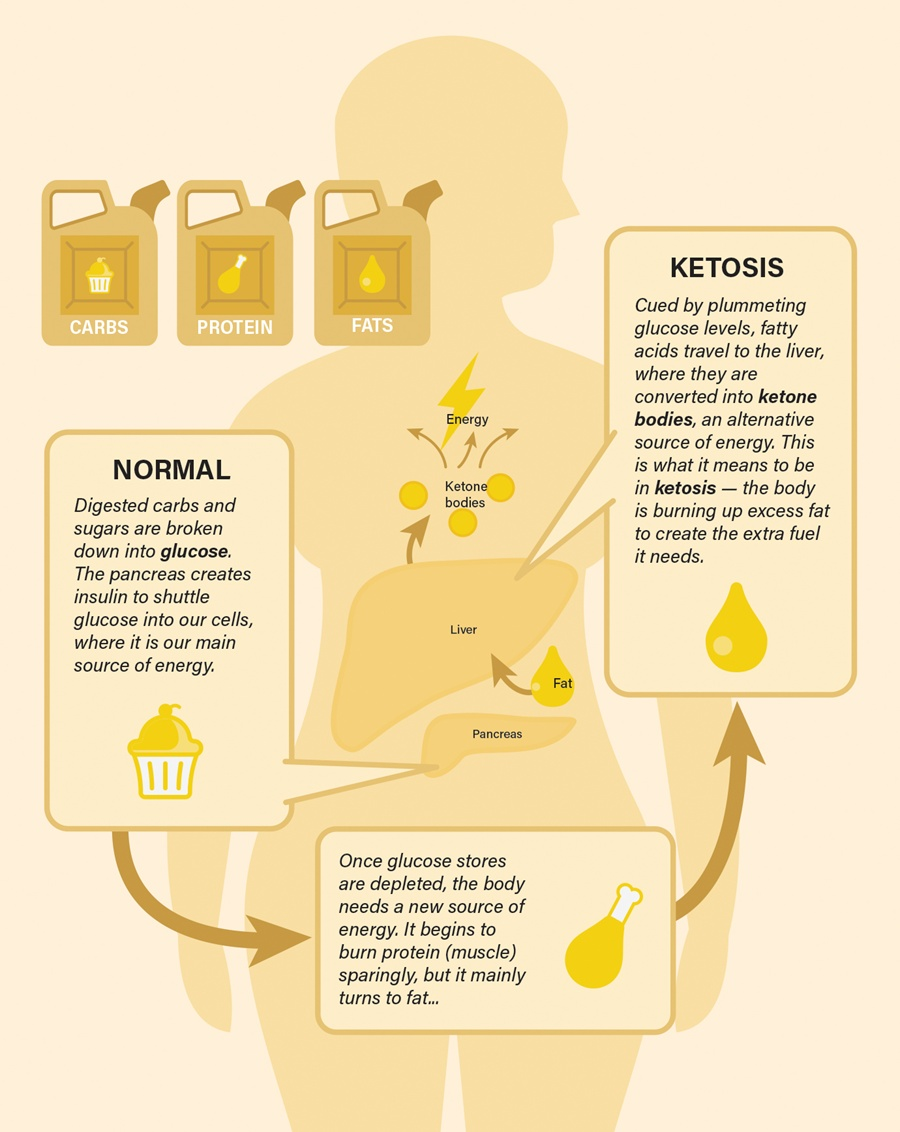 The Science Behind Fasting - Ketosis