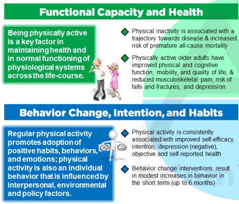 Copenhagen Consensus statement 2019: physical activity and ageing