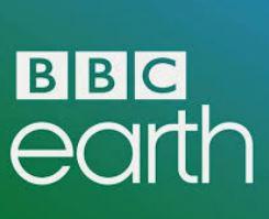 BBC Earth Videos