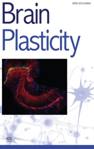 Brain Plasticity Journal 2020
