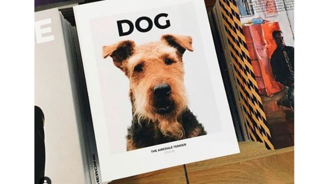 "Podcast Interviews: ""DOG"" Magazine Editors Julian Victoria and Emily Rogers"