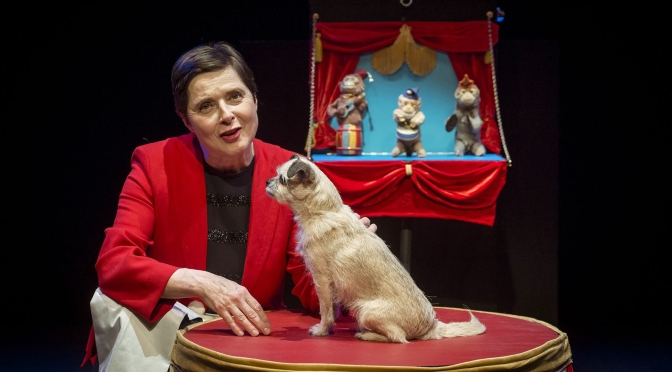 Podcast Interviews: 67-Year Old Actress And Author Isabella Rossellini On Her Love Of Animals