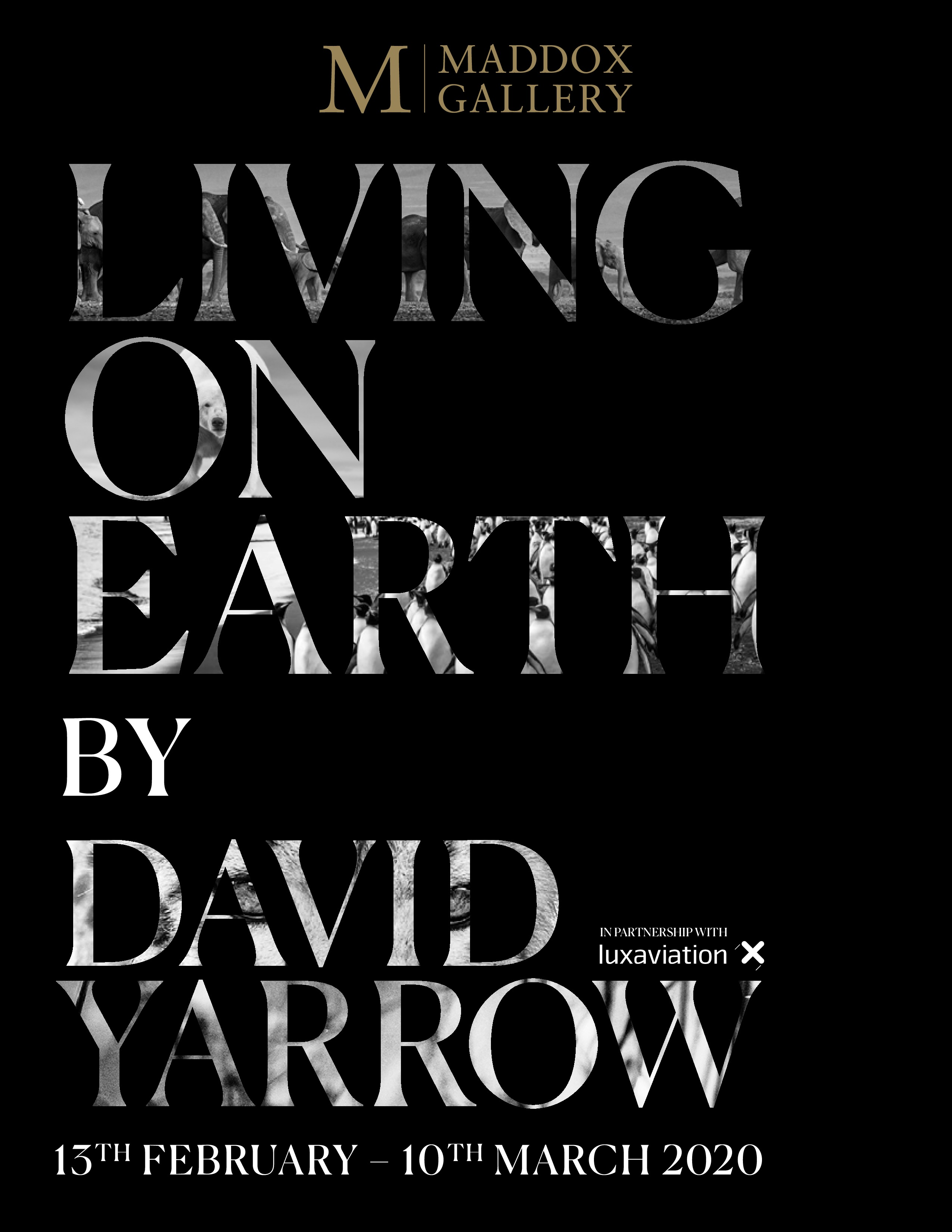 Maddox Gallery Living On Earth by David Yarrow Catalog Cover