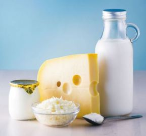 Milk and Dairy Product Health NEJM