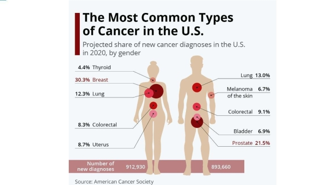 Health Infographics: The Most Common Types Of Cancer In U.S. By Gender