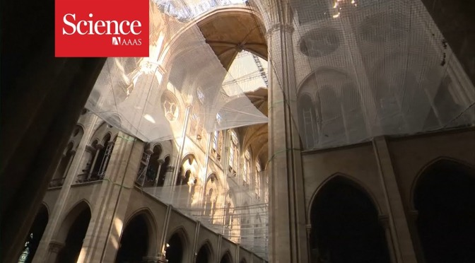 Architecture: A Look At The Restoration Of Notre Dame Cathedral In Paris