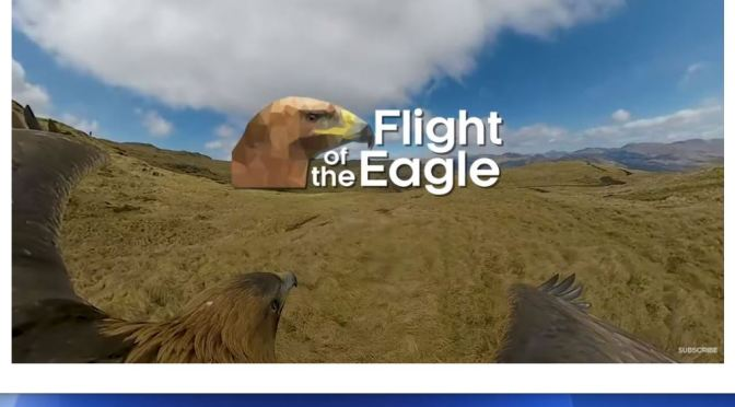 Wildlife Videos: View The Scottish Highlands From A Golden Eagle (BBC)