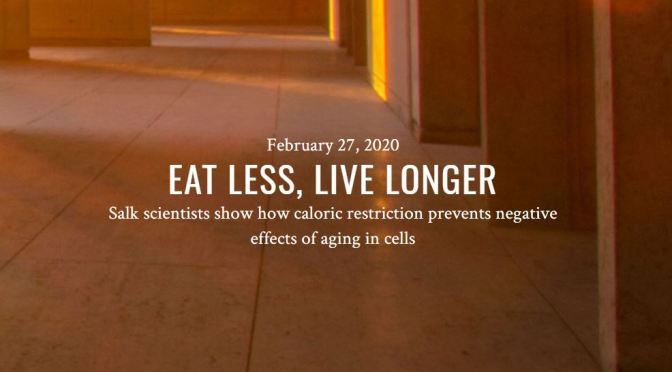 "Diet Studies: ""Eat Less, Live Longer"" – Calorie Restriction Delays Age-Related Diseases (Salk)"