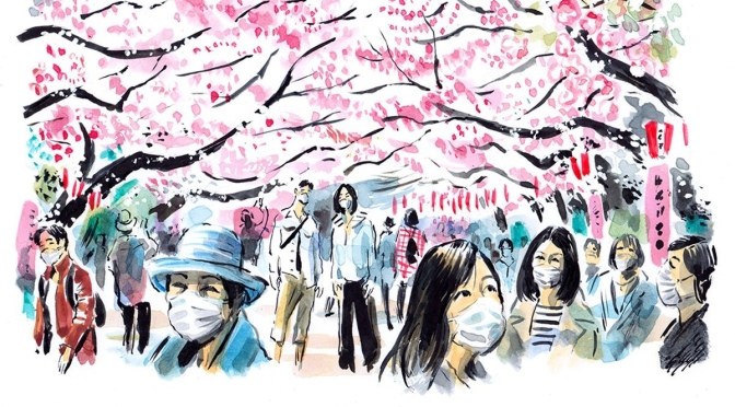 "Springtime: Japan's Cherry Blossom ""Hanami Parties"" In Time Of Coronavirus"