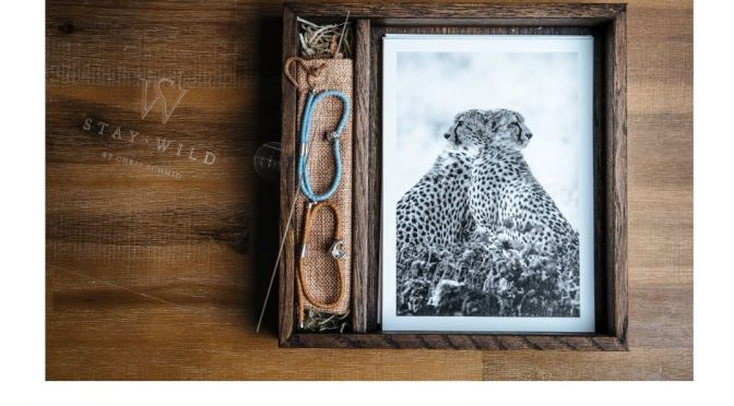 """Preserving Wildlife: """"Stay Wild"""" By Photographer Chris Schmid (2020)"""