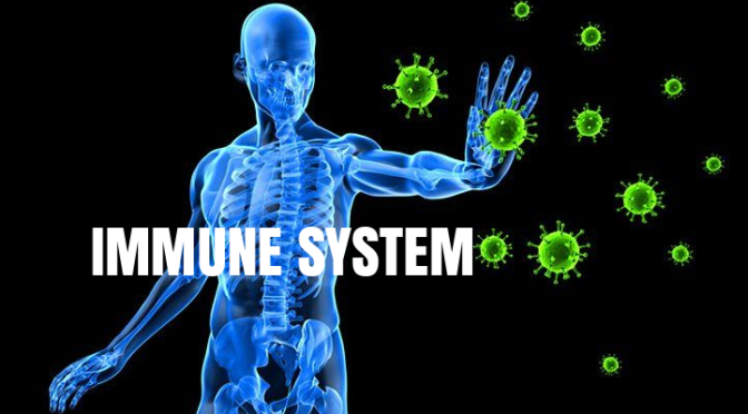 "Health Podcast: ""Aging And The Immune System"" (Mayo Clinic Radio)"