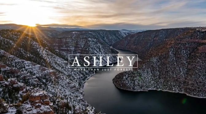 "Top New Travel Videos: ""Ashley National Forest"" By The Pattiz Brothers"