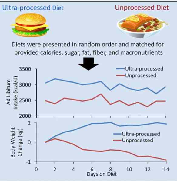 Ultra-Processed Diet and Unprocessed Diet Infographic