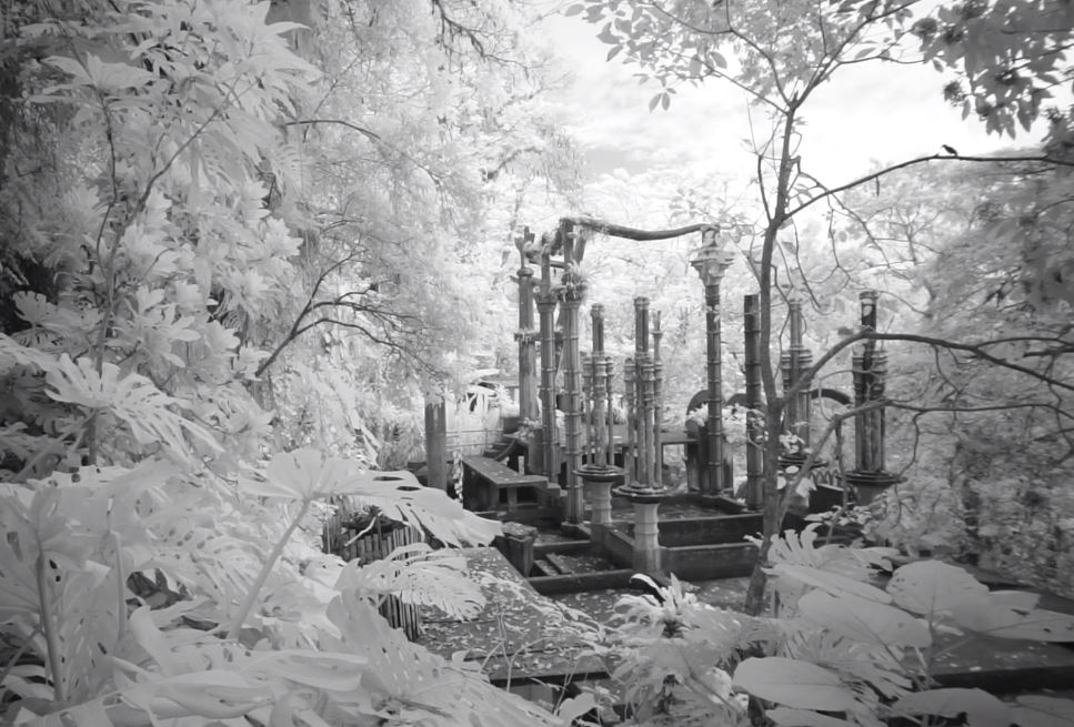 Jungle Xanadu - The Story of Las Pozas Short Film by Bob Krist March 26 2020