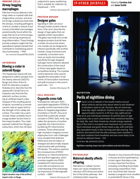 Science Magazine Research Highlights April 3 2020 Page 2