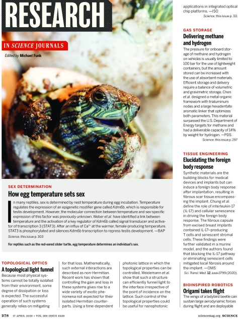 Science Magazine April 17 2020 Research Highlights Infographic