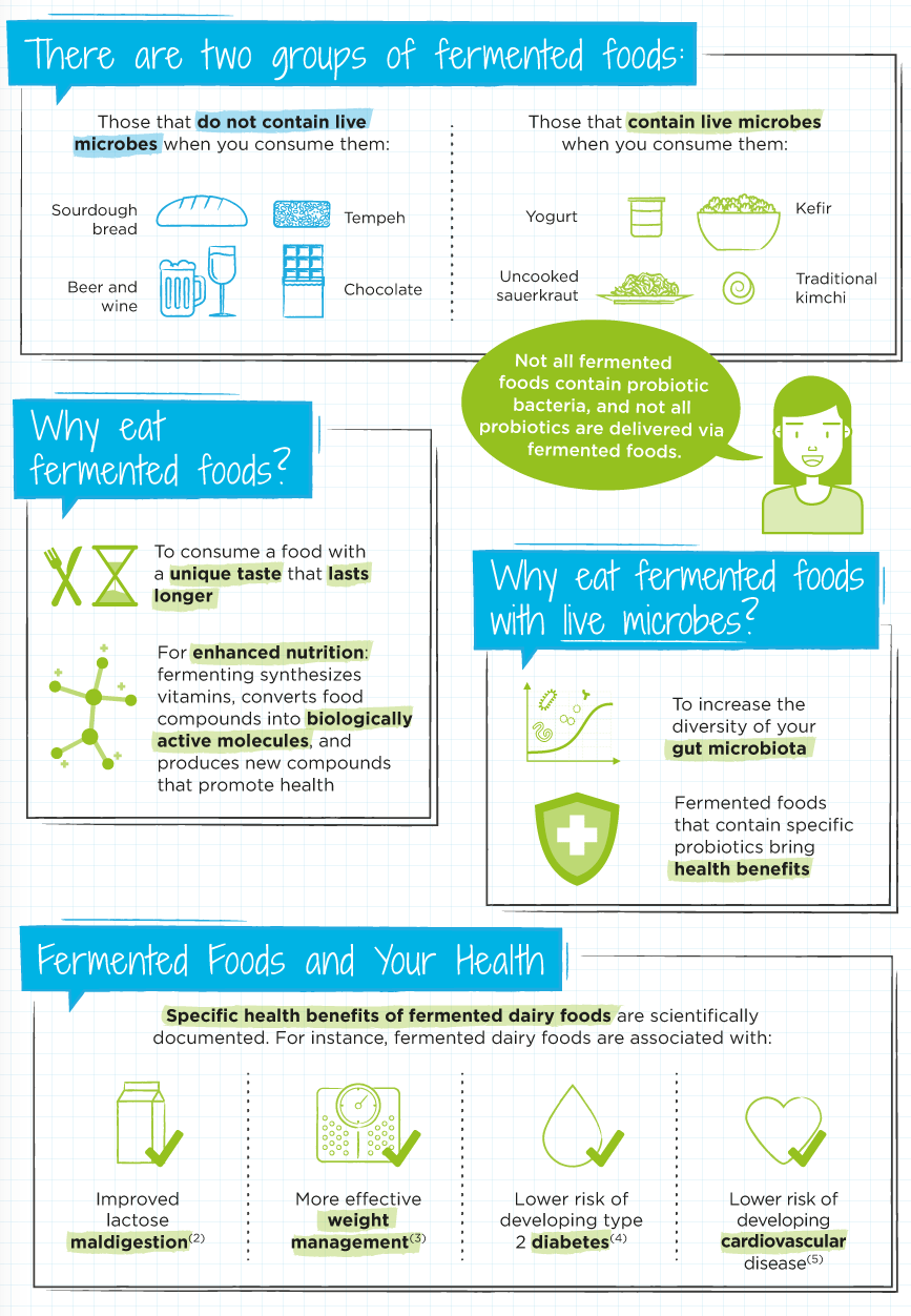 Guide To Fermented Foods Infographic