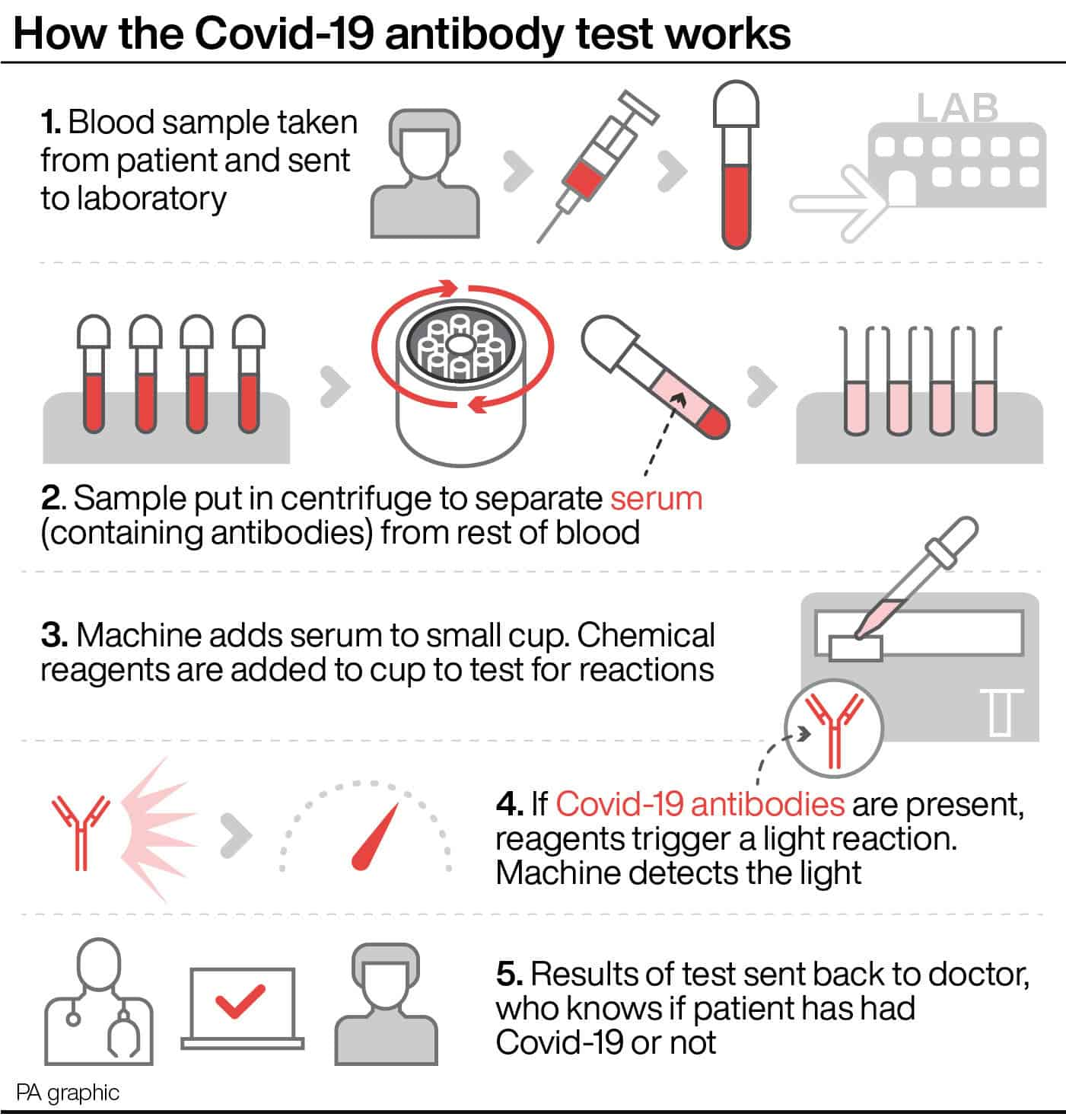 Infographic - How The Covid-19 Antibody Test Works